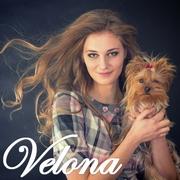 Швейное предприятие Velona